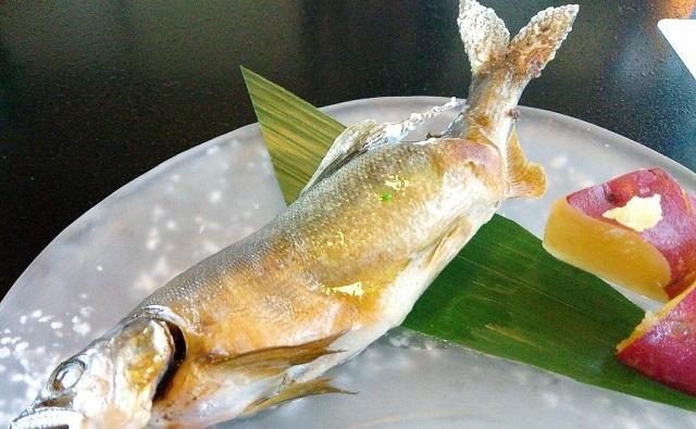 魚 イメージ
